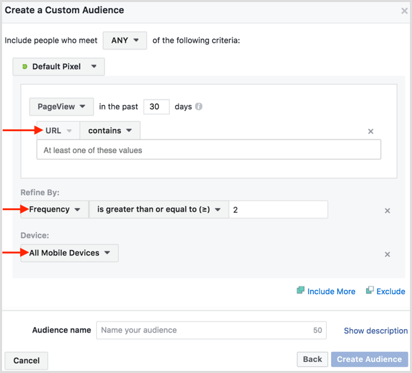 facebook-ads-manager-create-website-custom-audienc-2